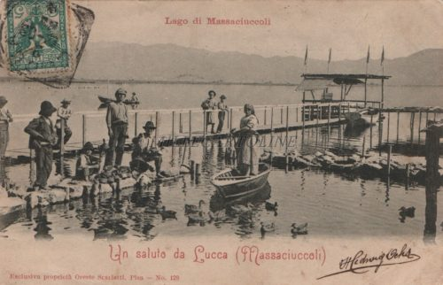 Cartolina Postale LAGO MASSACCIUCCOLI
