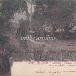 Cartolina Postale LUCCHIO